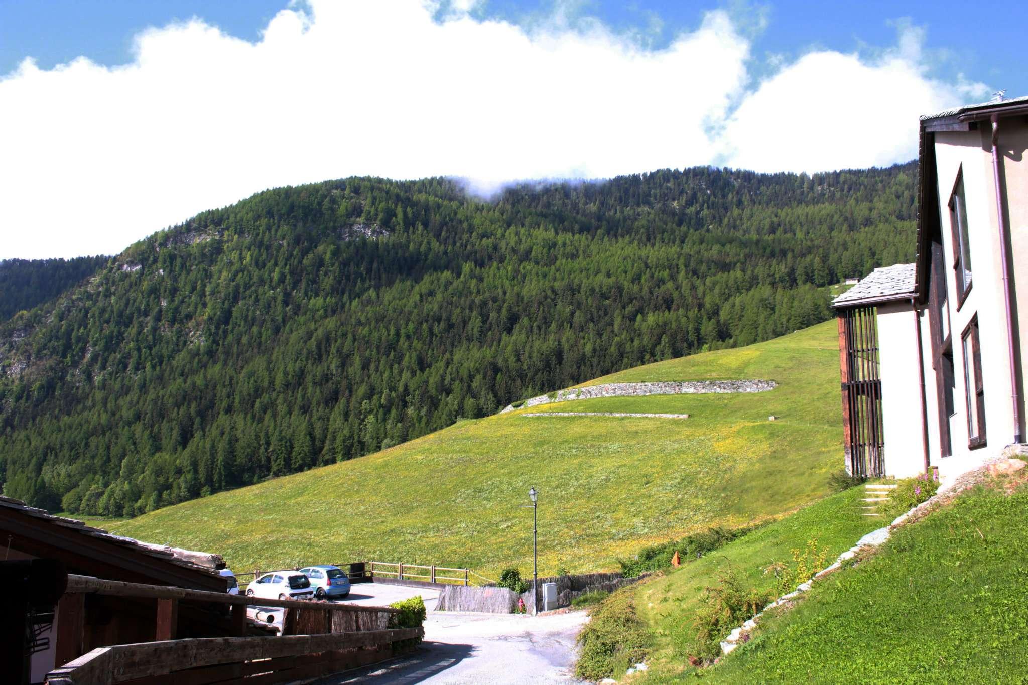 Bilocale Torgnon Strada Torgnon, Frazione Champaghod 5 10