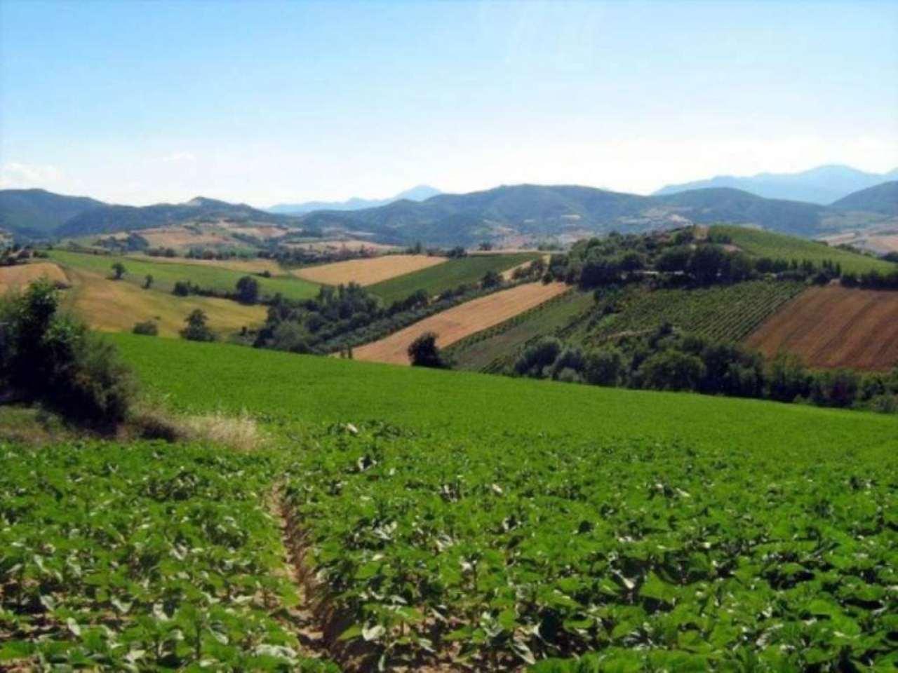 Terreno Agricolo in vendita a Calcinato, 9999 locali, prezzo € 110.000 | Cambio Casa.it
