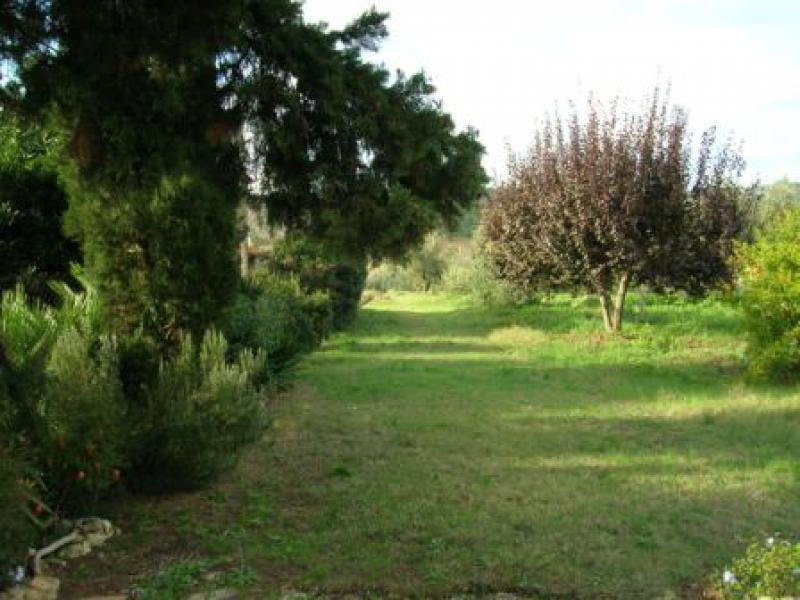 Villa Tri-Quadrifamiliare in Vendita a Bibbona