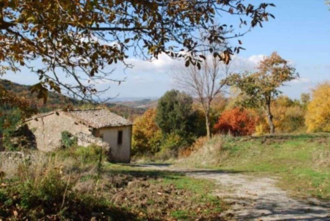 Rustico / Casale in vendita a Castiglione d'Orcia, 6 locali, prezzo € 390.000 | Cambio Casa.it