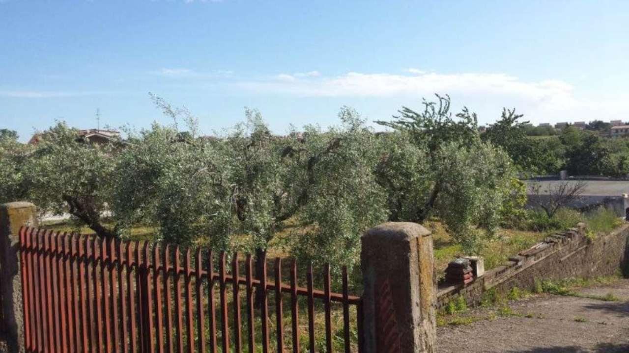 Terreno Agricolo in Vendita a Ciampino