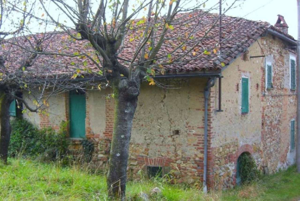 Castelnuovo Don Bosco Vendita CASALE / RUSTICO / CASA / CASCINA Immagine 0