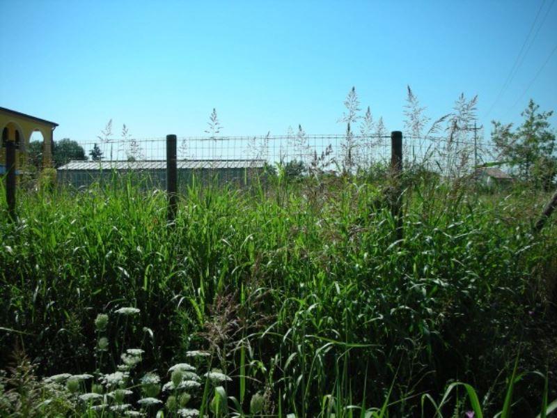 Terreno Edificabile Residenziale in vendita a Legnaro, 9999 locali, prezzo € 110.000 | Cambio Casa.it