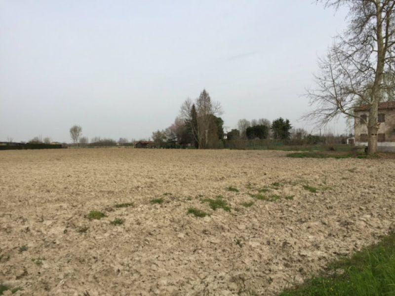 Terreno Edificabile Residenziale in Vendita a Casalserugo