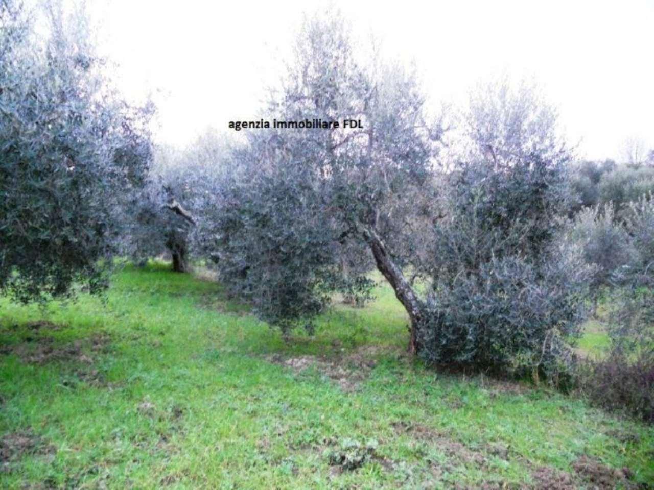 Terreno Agricolo in vendita a Casciana Terme Lari, 1 locali, prezzo € 25.000 | CambioCasa.it