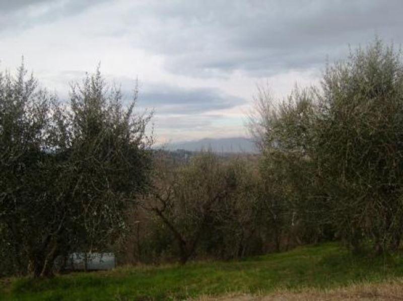 Terreno Edificabile Residenziale in vendita a Terricciola, 9999 locali, prezzo € 100.000 | Cambio Casa.it