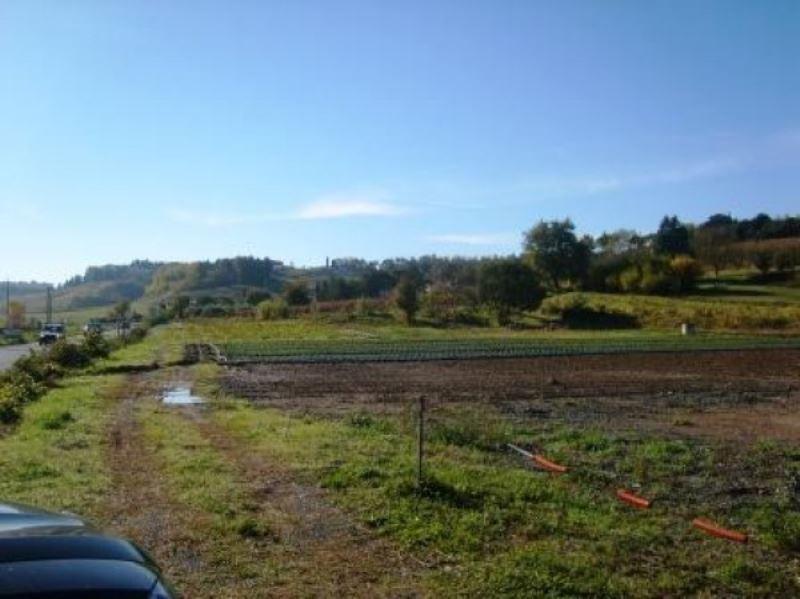 Terreno Agricolo in vendita a Terricciola, 9999 locali, Trattative riservate | Cambio Casa.it