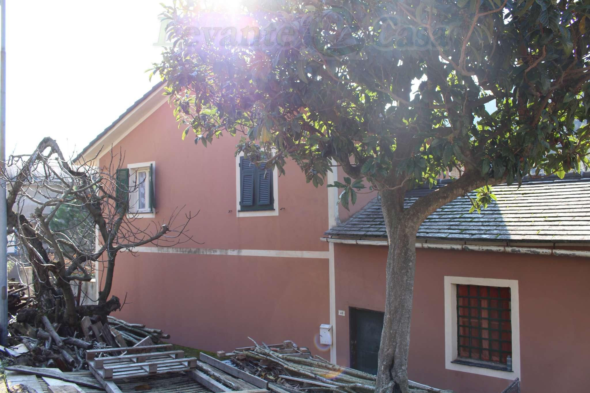 Foto 5 di Terratetto - Terracielo Avegno