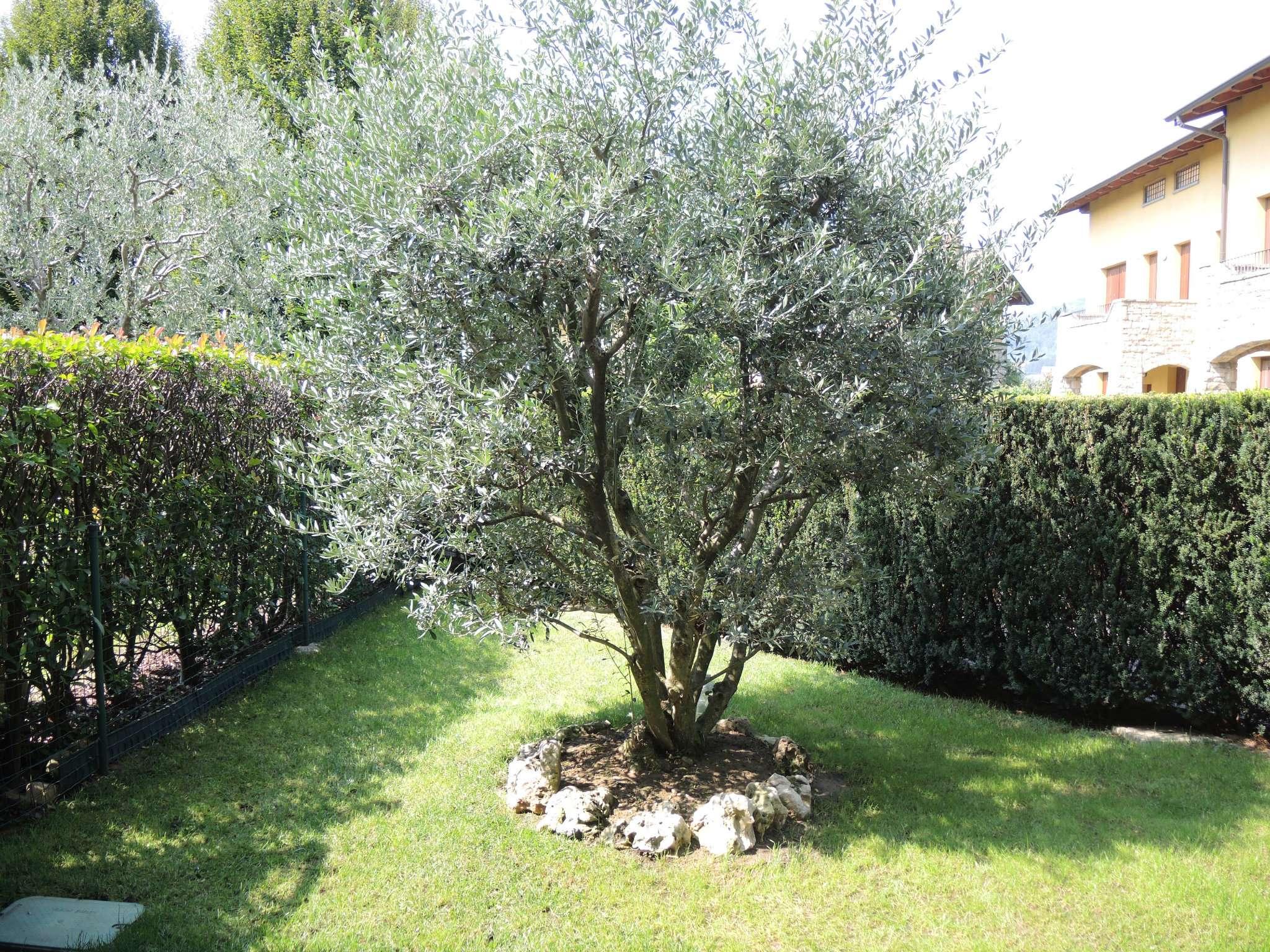 Bilocale Gorle Via Martinella 5