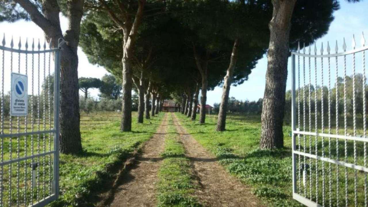 Terreno Edificabile Residenziale in vendita a Pomezia, 10 locali, Trattative riservate | CambioCasa.it