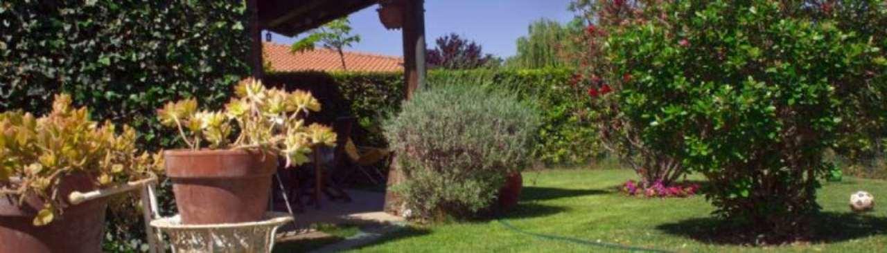 bungalows  in Vendita a Piombino