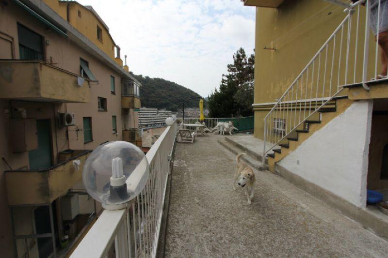 Bilocale Genova Via Delle Gavette 11