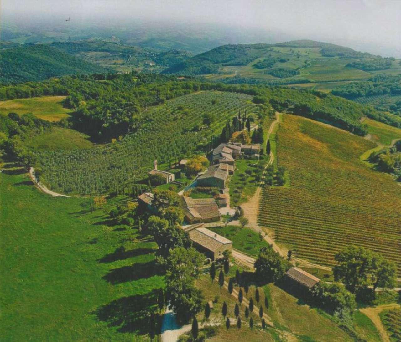 Altro in Vendita a Montalcino