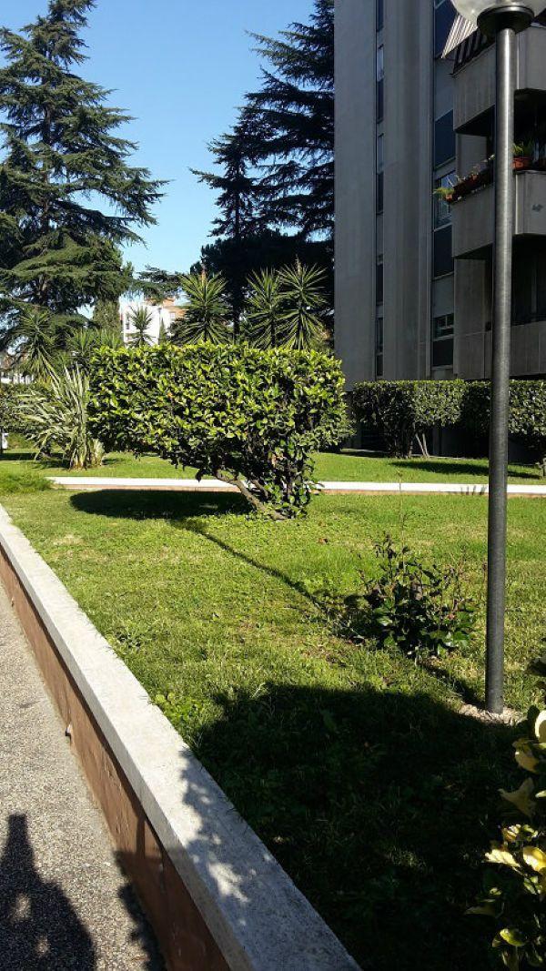 Appartamento in affitto a Roma, 2 locali, zona Zona: 8 . Tiburtina, Colli Aniene, Pietrasanta, San Basilio, prezzo € 800 | Cambio Casa.it