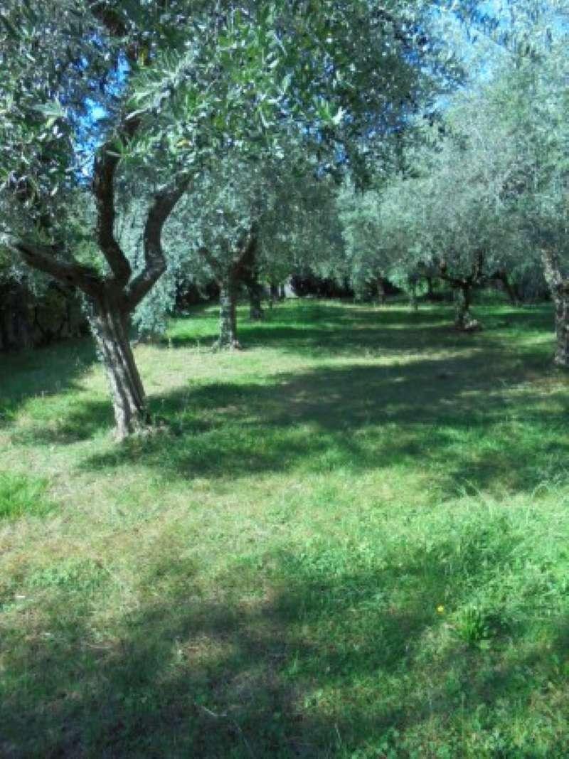 Appartamento in affitto a Manerba del Garda, 3 locali, prezzo € 1.000 | CambioCasa.it
