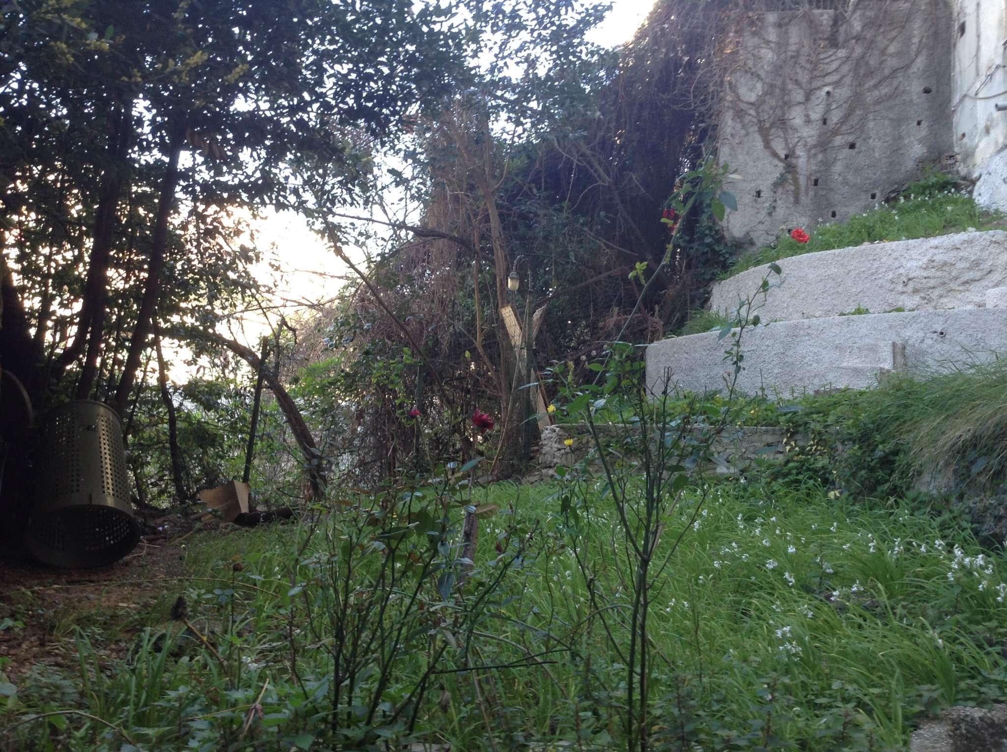Bilocale Genova Via San Bartolomeo Del Fossato 5