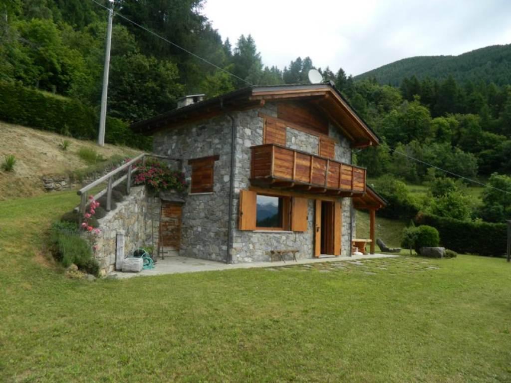 Villa Unifamiliare - Indipendente in Vendita a Montagna In Valtellina (SO). Cerco Ville a ...