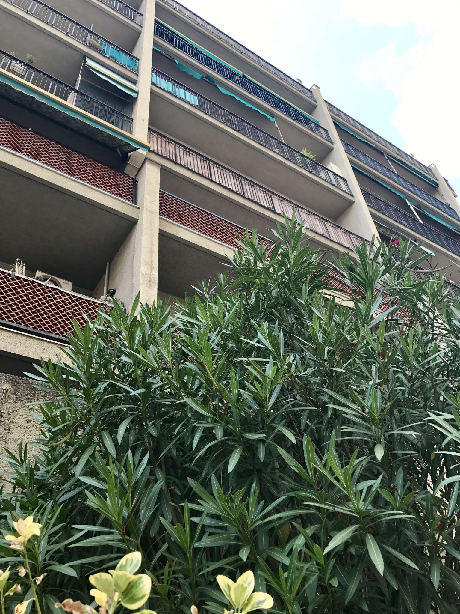 Appartamento in Vendita a Genova Centro: 70 mq