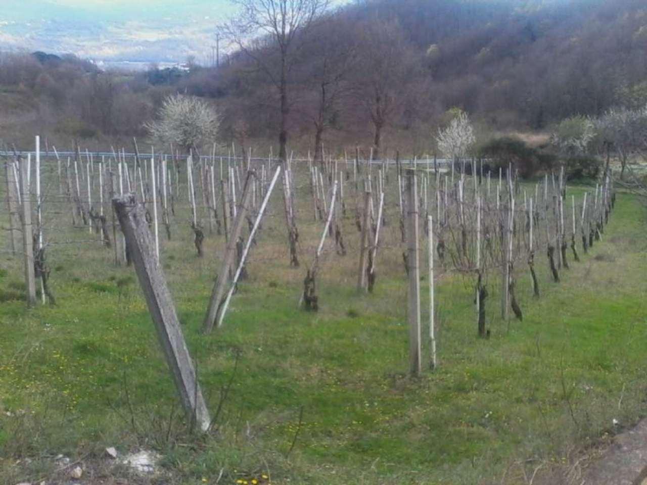 Bilocale Prata di Principato Ultra Via Localita' Cellaro 10