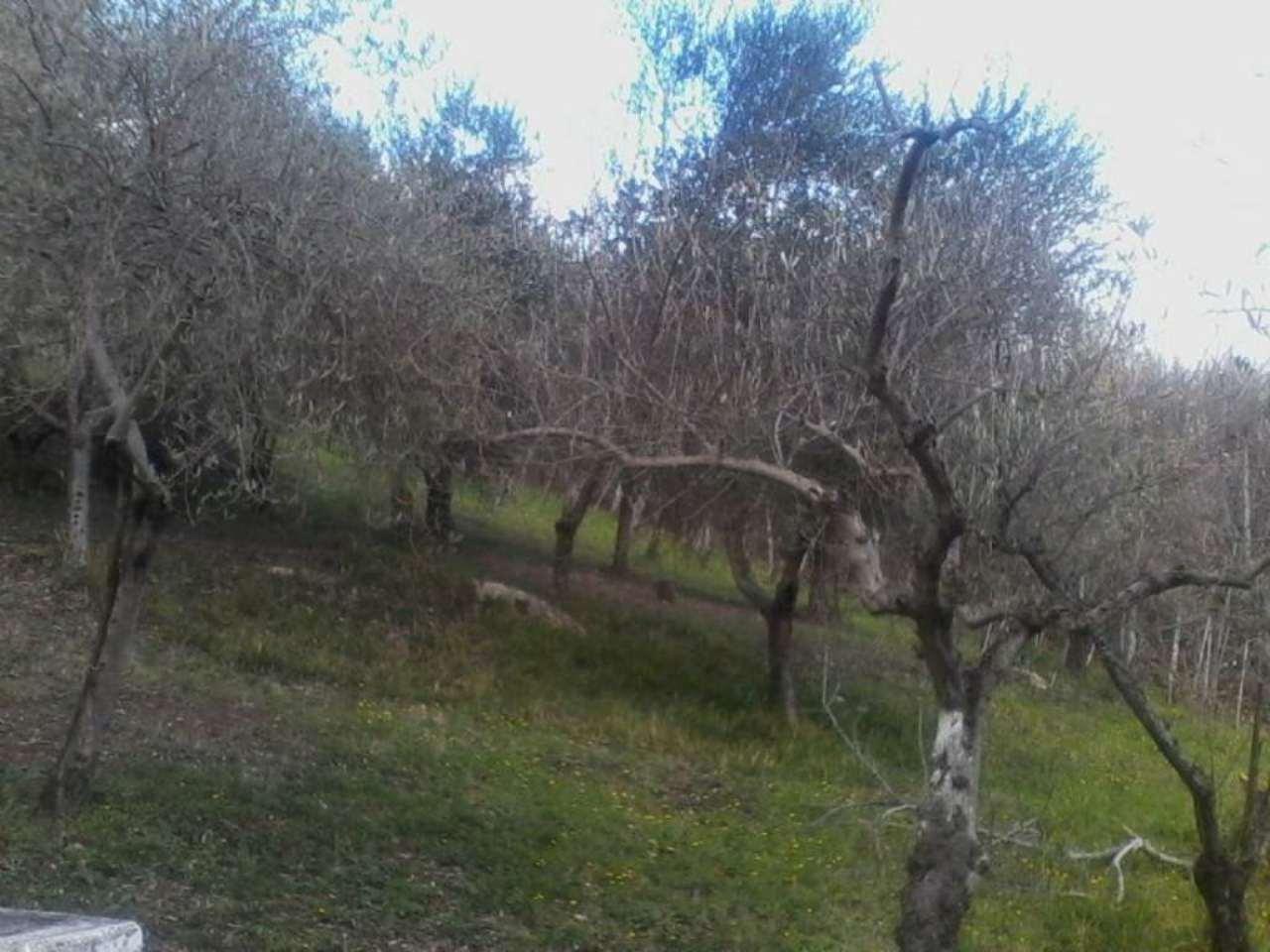 Bilocale Prata di Principato Ultra Via Localita' Cellaro 13