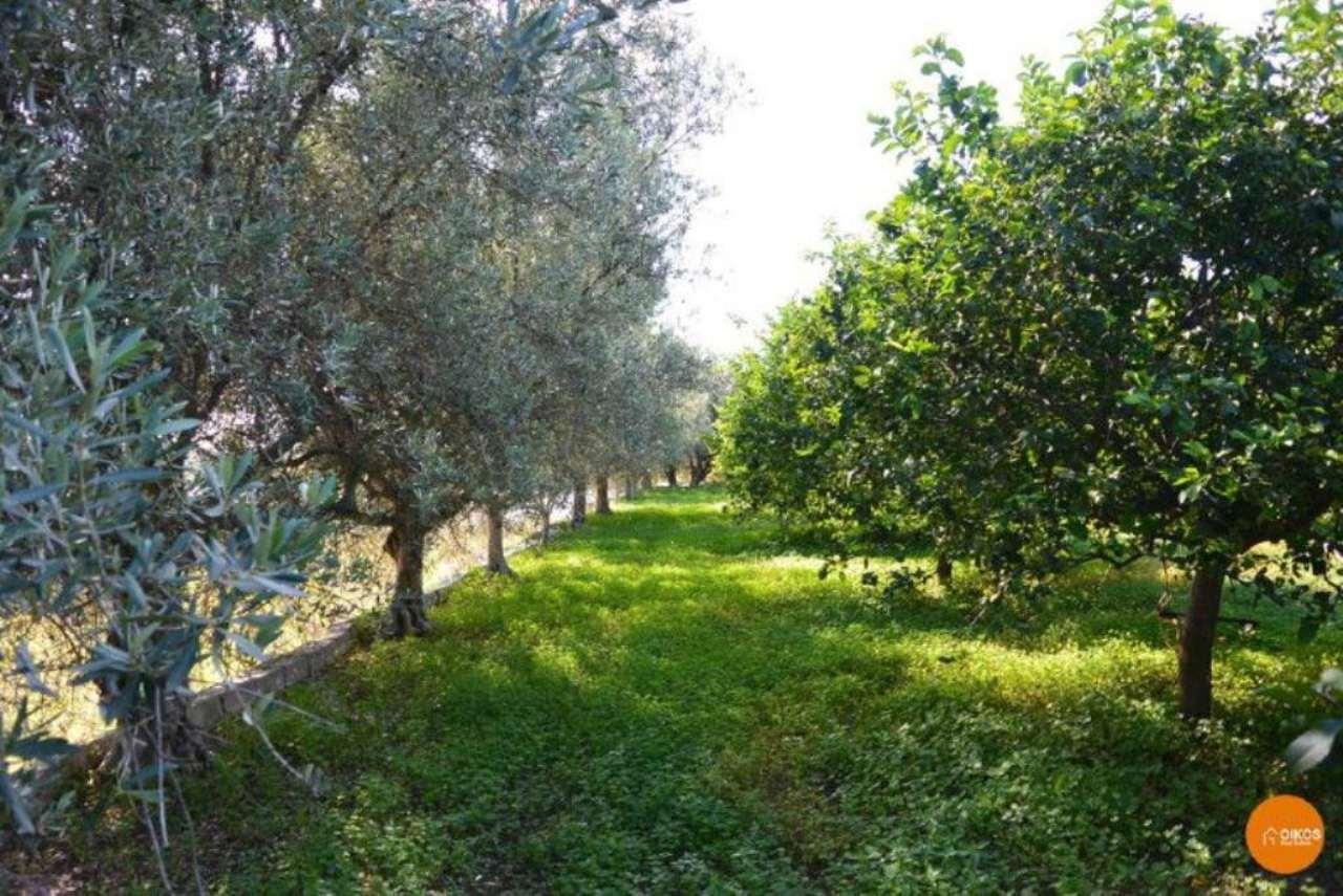 Terreno Agricolo in vendita a Noto, 1 locali, prezzo € 140.000 | Cambio Casa.it