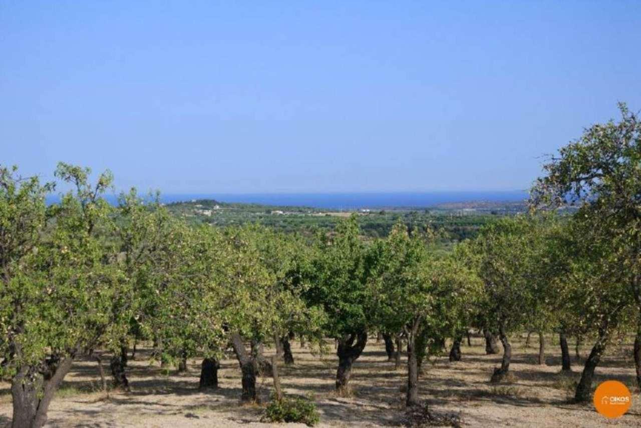 Terreno Agricolo in vendita a Noto, 9999 locali, prezzo € 60.000 | Cambio Casa.it