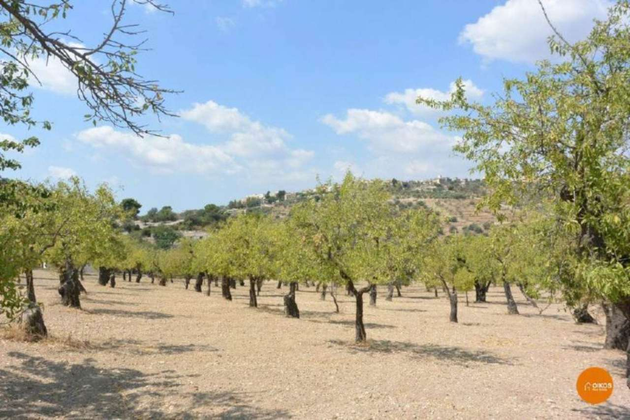 Terreno Agricolo in vendita a Avola, 9999 locali, prezzo € 150.000 | Cambio Casa.it