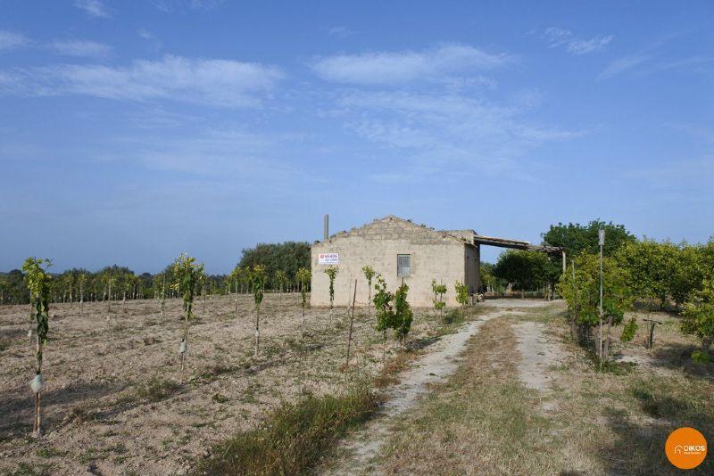 Terreno Agricolo in Vendita a Noto