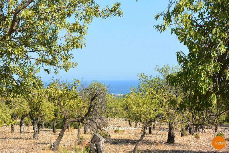 Terreno Agricolo in vendita a Avola, 9999 locali, prezzo € 160.000 | Cambio Casa.it