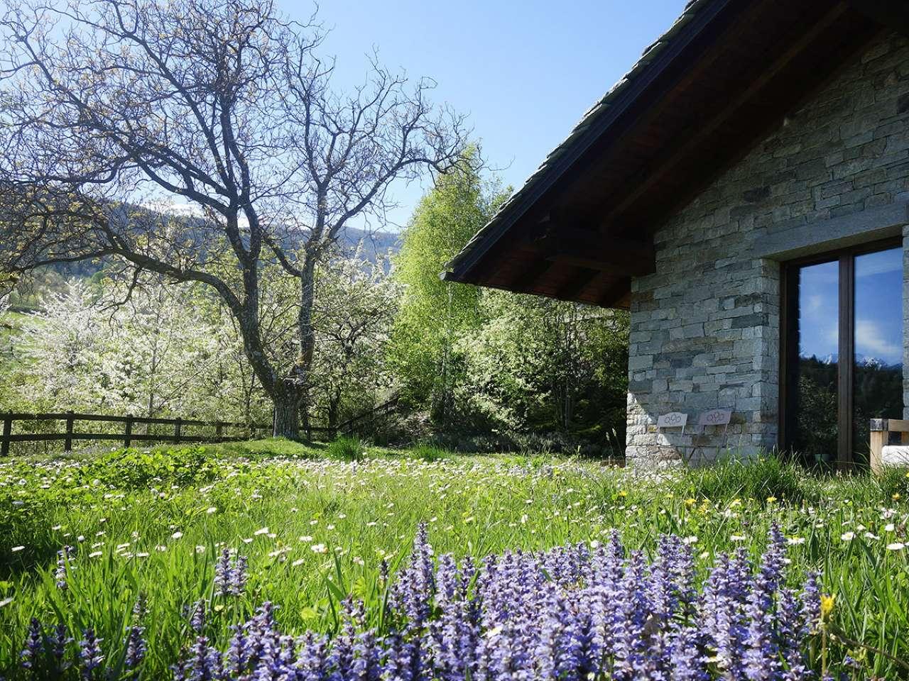 01giardino9_villa Entrebin Aosta (79)
