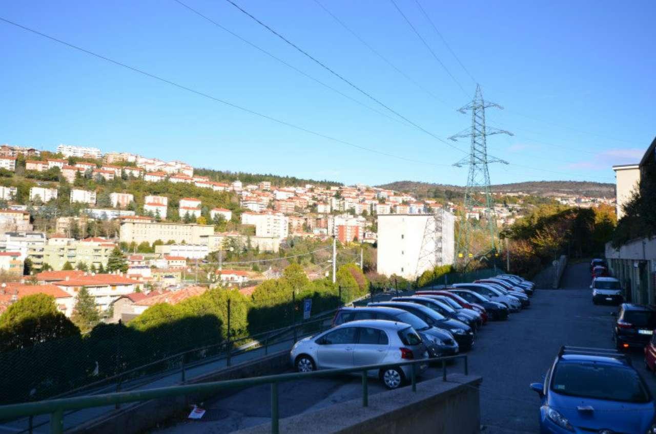 Appartamento quadrilocale in vendita a Trieste (TS)