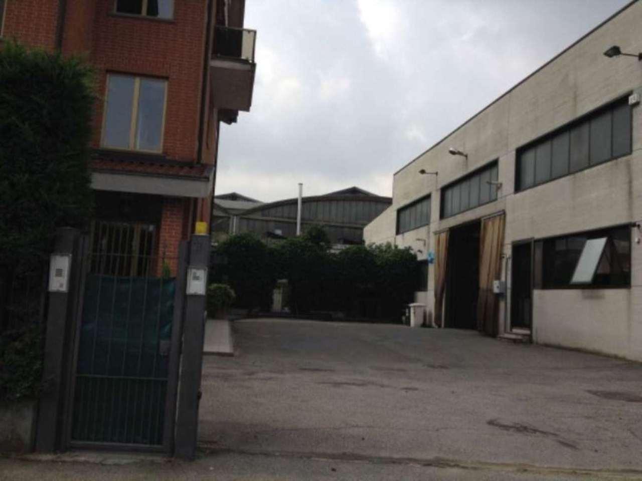 Collegno Affitto CAPANNONE Immagine 3
