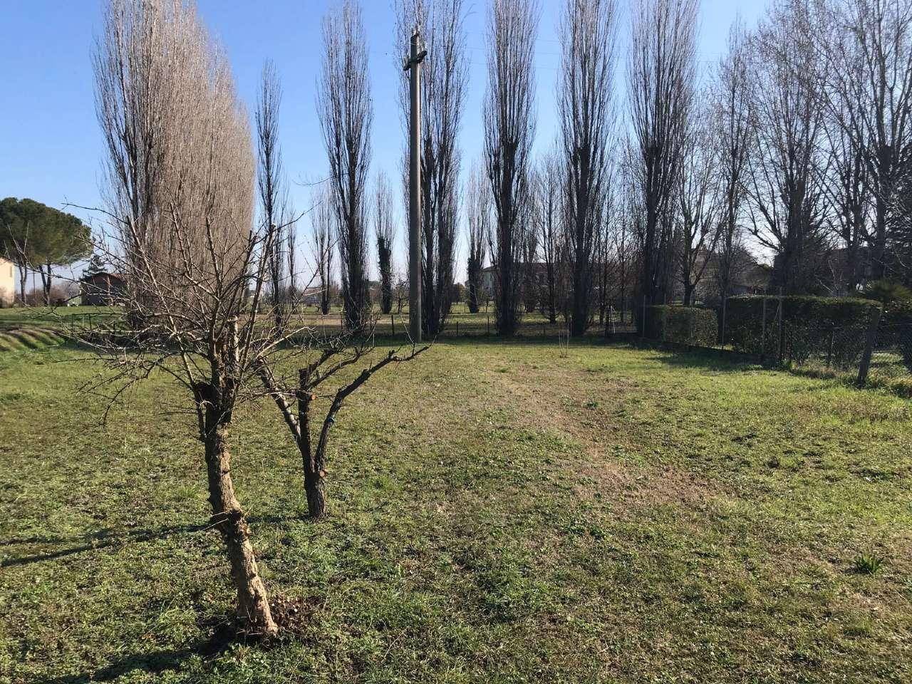 Casa indipendente in Vendita a Ravenna Periferia: 5 locali, 320 mq