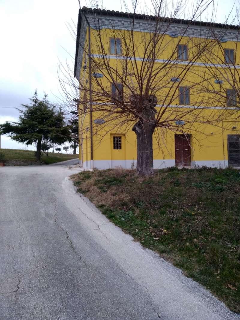 Macerata Vendita CASALE / RUSTICO / CASA / CASCINA Immagine 0