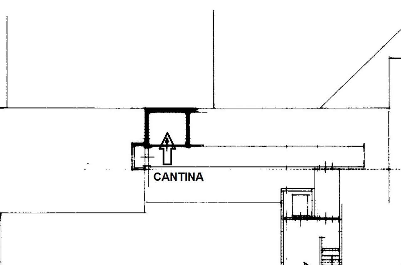 PLN CANTINA