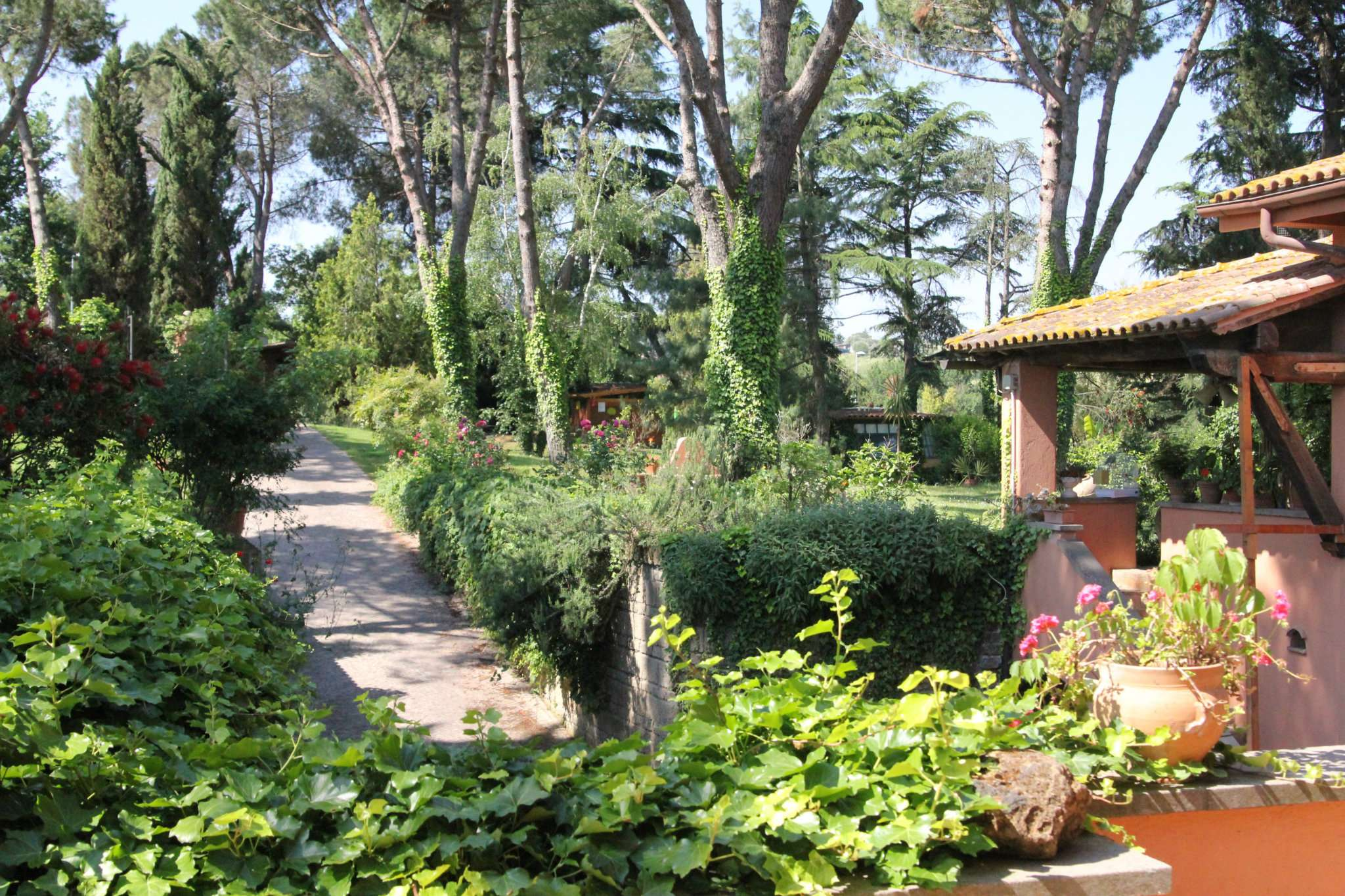 Villa in affitto a Roma, 9999 locali, zona Zona: 31 . Giustiniana, Tomba di Nerone, Cassia, prezzo € 2.400 | Cambio Casa.it