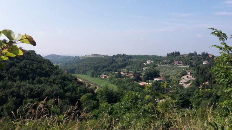 Terreno Edificabile Residenziale in vendita a Negrar, 9999 locali, prezzo € 166.000   Cambio Casa.it