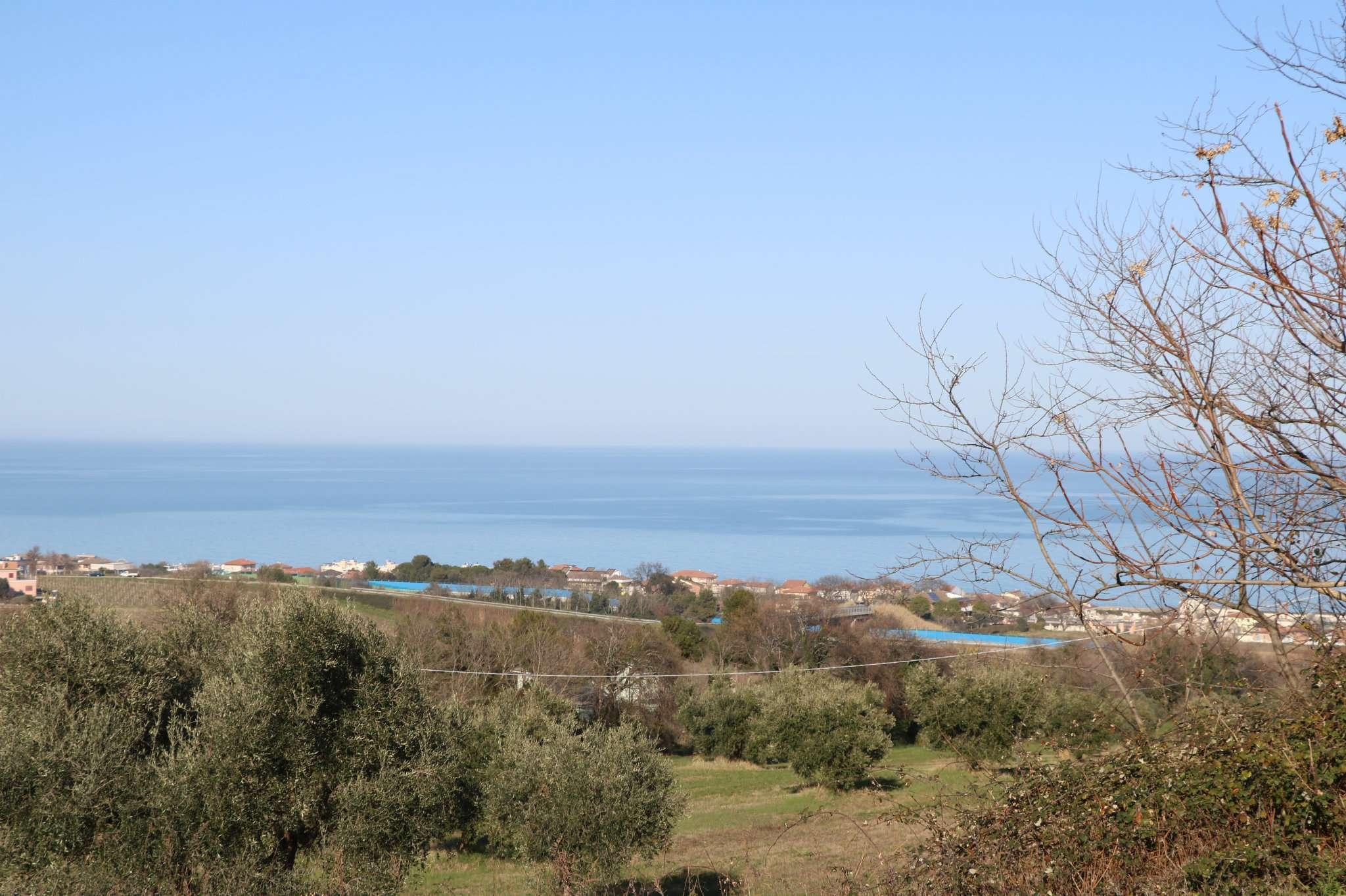 Terreno Agricolo in Vendita a Civitanova Marche
