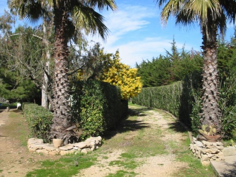 Rustico / Casale in Affitto a Gallipoli