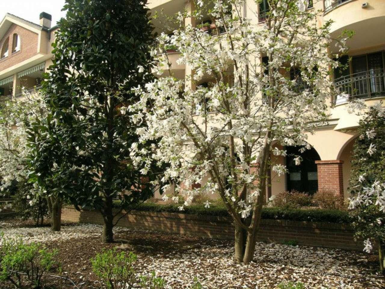 Appartamento in affitto a Cassina de' Pecchi, 1 locali, prezzo € 450 | Cambio Casa.it