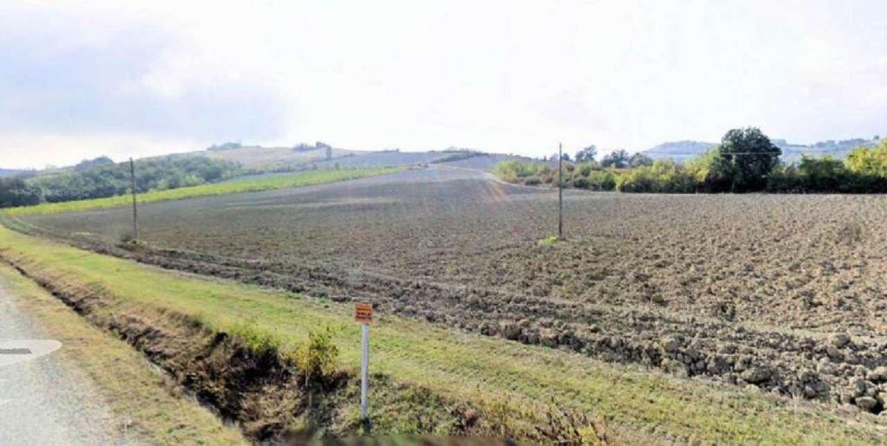 Terreno Agricolo in vendita a Bertinoro, 9999 locali, prezzo € 260.000 | CambioCasa.it