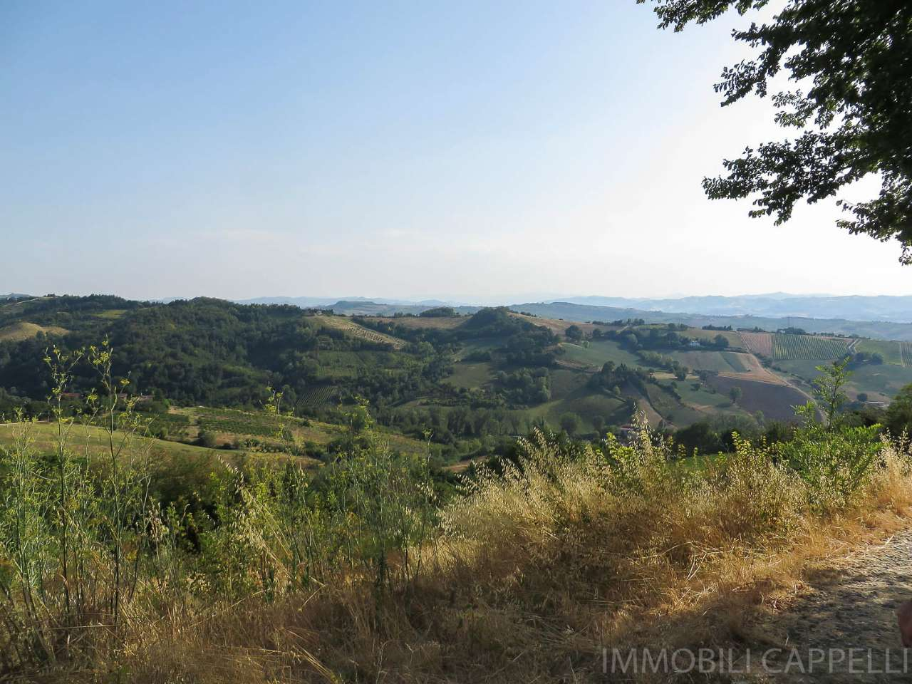 Terreno Agricolo in vendita a Bertinoro, 9999 locali, prezzo € 60.000 | CambioCasa.it