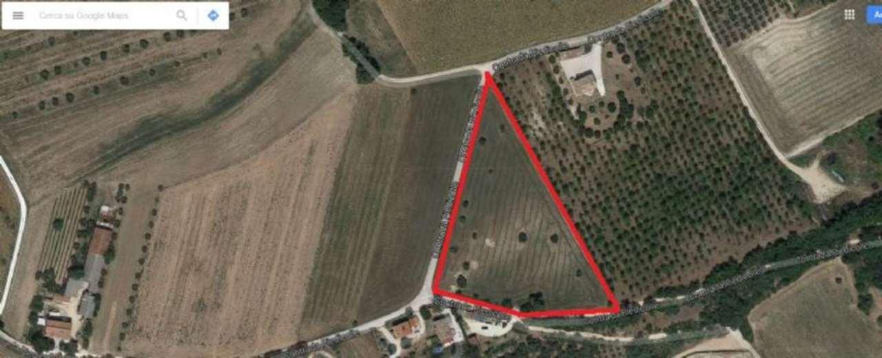 Terreno Agricolo in vendita a Corridonia, 9999 locali, prezzo € 85.000 | Cambio Casa.it
