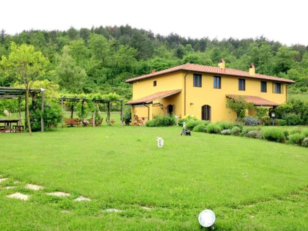 Vendita case e appartamenti a pontassieve for Case in vendita pontassieve