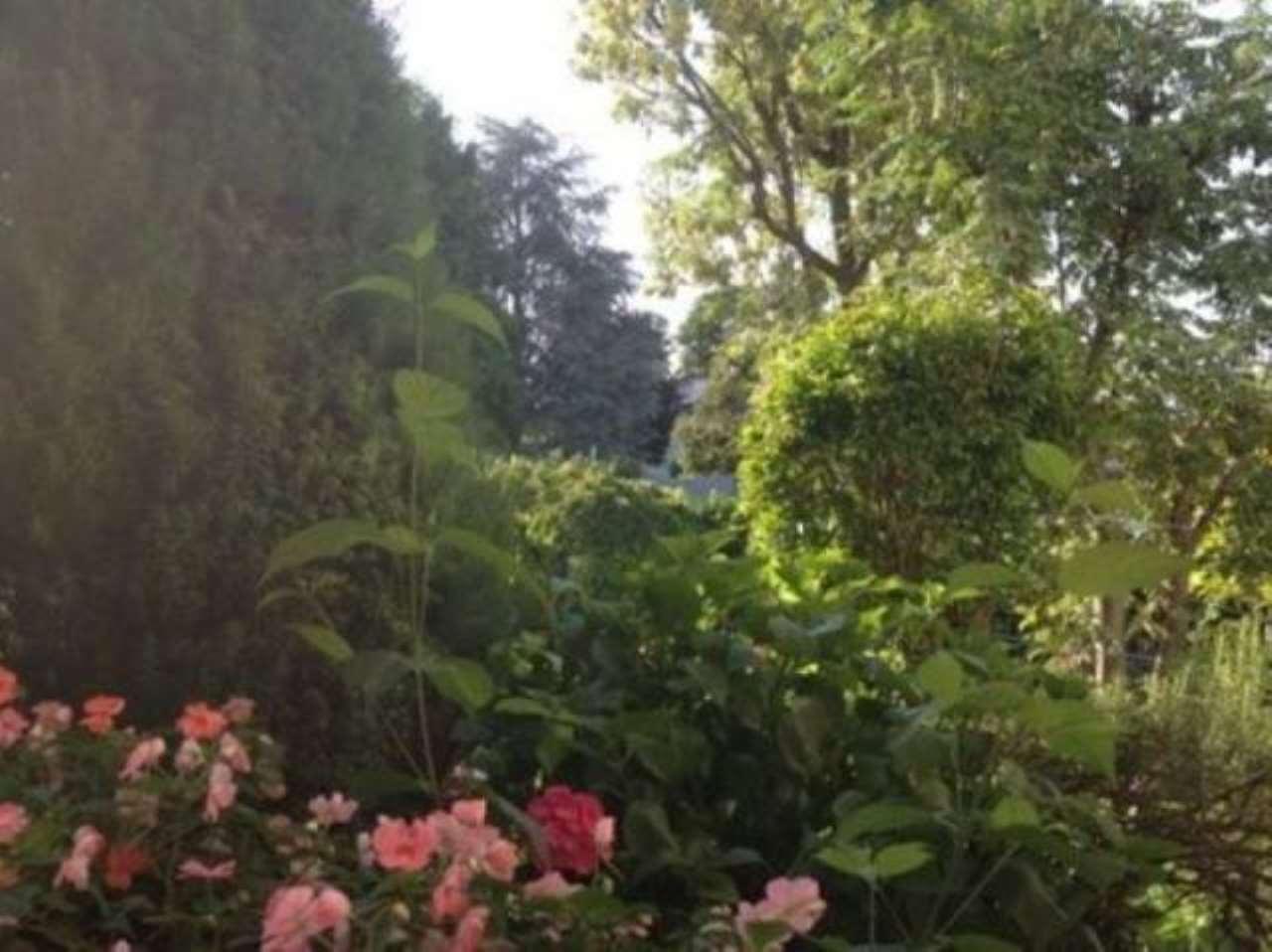Villa in vendita a Gazzola, 3 locali, prezzo € 330.000   CambioCasa.it