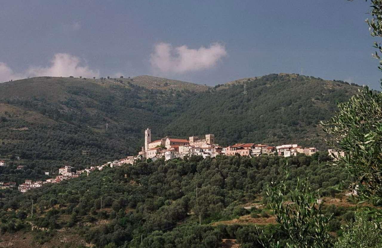 Soluzione Semindipendente in vendita a Castellaro, 3 locali, prezzo € 120.000 | Cambio Casa.it