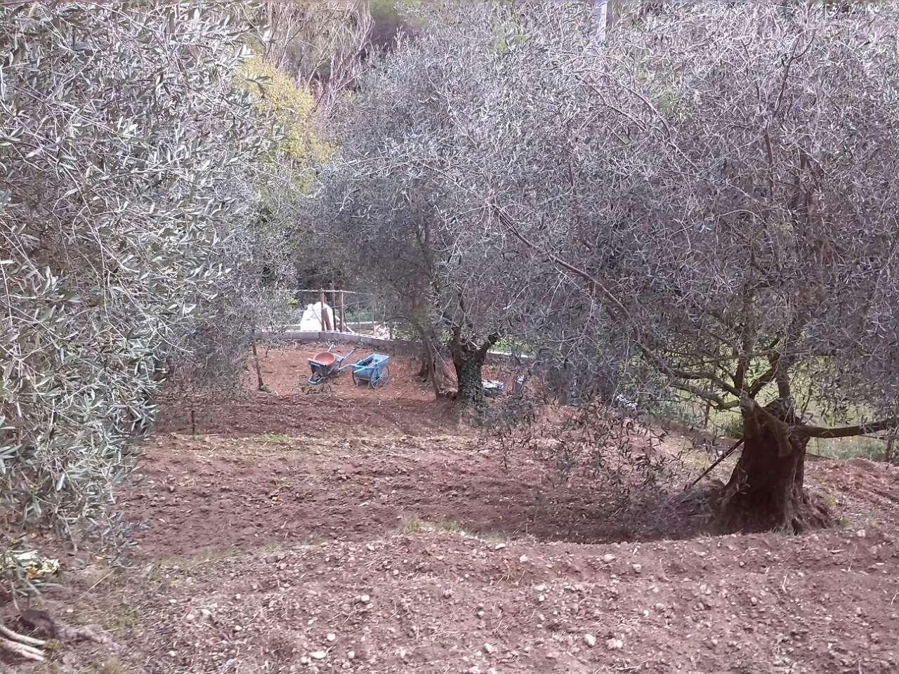 Terreno Agricolo in vendita a SanRemo, 9999 locali, prezzo € 25.000 | CambioCasa.it