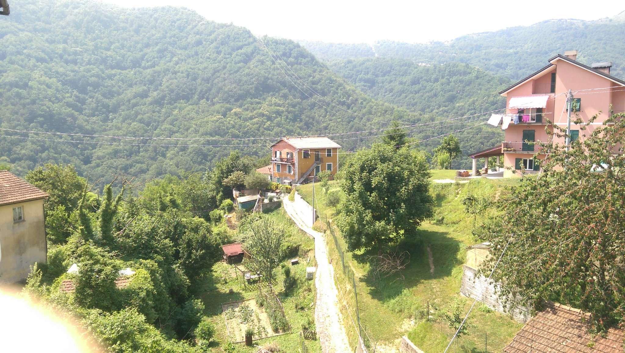 Appartamento in vendita a Bargagli, 4 locali, prezzo € 29.000 | CambioCasa.it