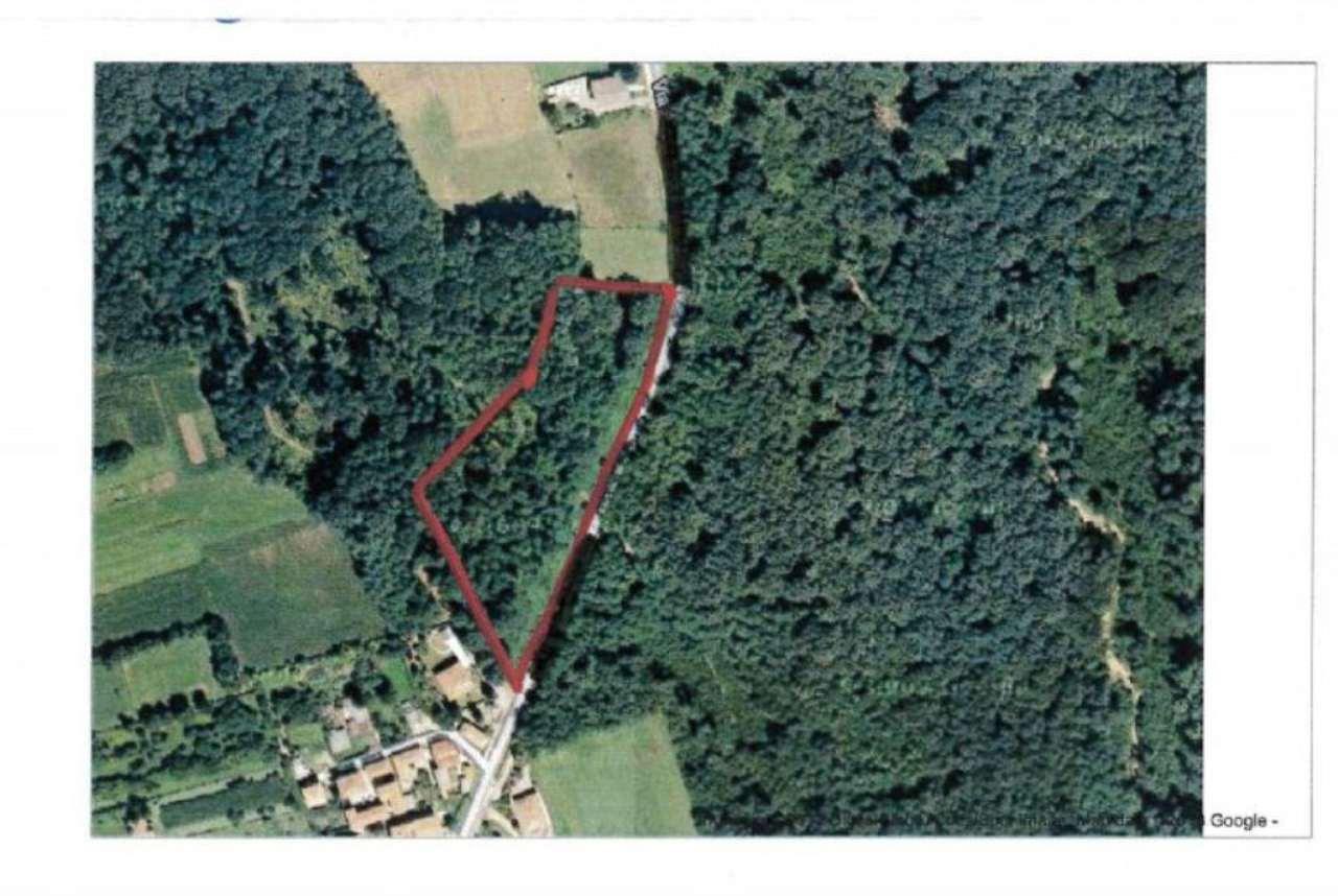 Terreno Agricolo in vendita a Tradate, 9999 locali, prezzo € 40.000 | Cambio Casa.it