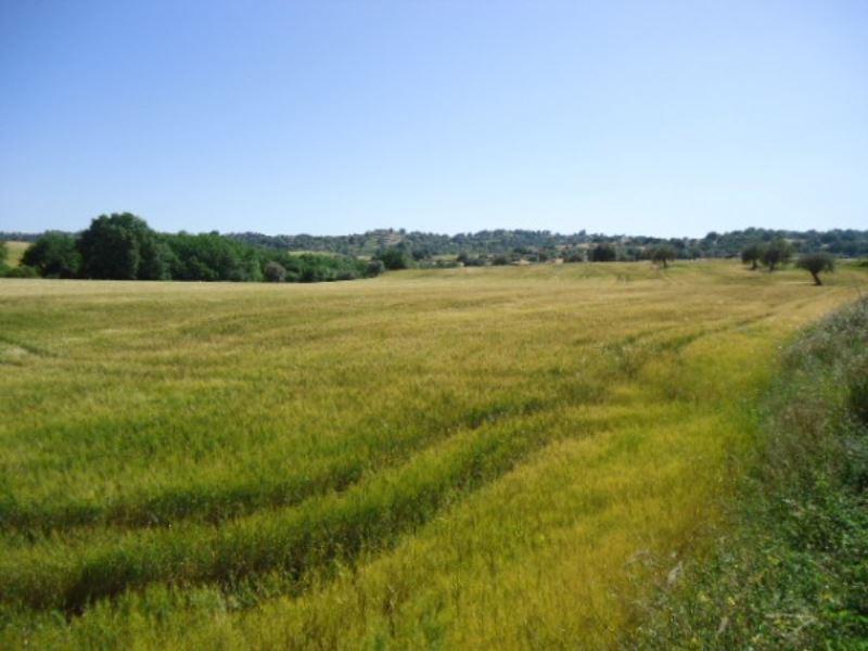 Terreno Agricolo in vendita a Modica, 9999 locali, prezzo € 360.000 | Cambio Casa.it